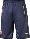 Puma Soccer Shorts