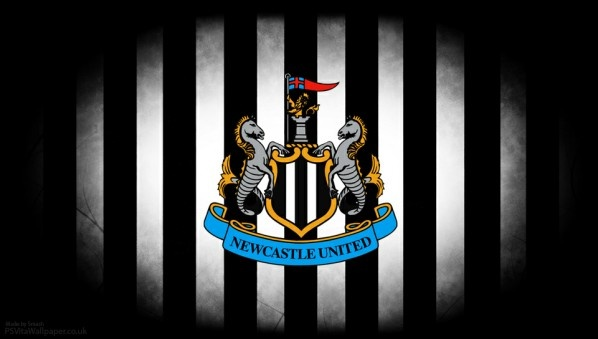 Newcastle United 2013/14 Outlook