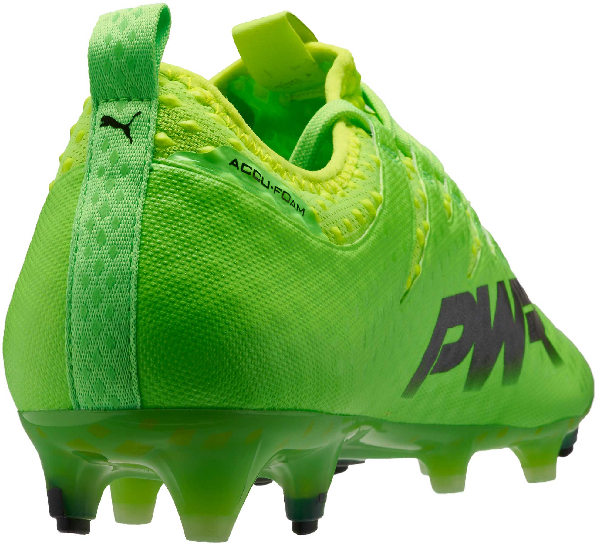 ab4fcbccc31 Puma evoPOWER Vigor 1 FG - Green Puma Soccer Cleats