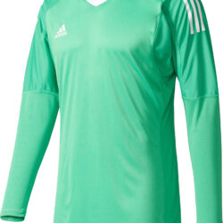 adidas Revigo 17 Goalkeeper Jerseys - Green b23adade5