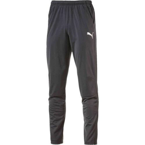 Puma Liga Training Pants – Asphalt