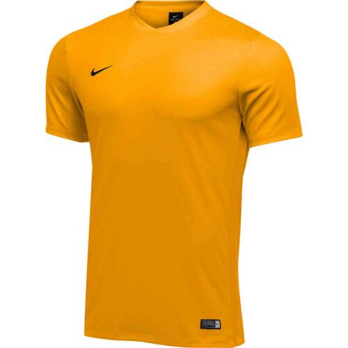 Kids Nike Park VI Jersey – University Gold